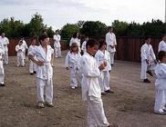 Budofight Karate Klub - Sporttevékenység