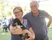 Kutyatár Természet- és Állatvédő Egyesület - Állatmentés, természetvédelem