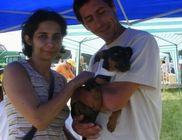 Elhagyott állatokért Első Sárréti Regionális Állatvédő Egyesület