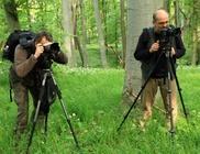 Vadvilág Magyar Természetfotósok Egyesülete