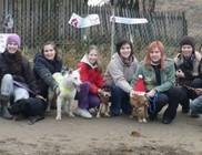 Árvácska Állatbarát Közhasznú Egyesület